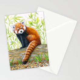 Red Panda Illustration   Watercolour and Ink Drawing   Red, Black and Green Stationery Cards
