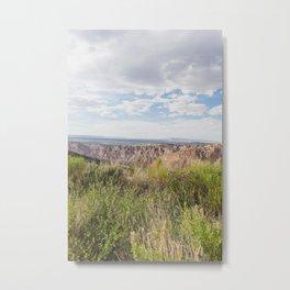 Wildflowers and Sandstone - Utah Landscape Photography Metal Print