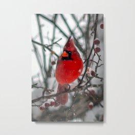Cardinal Art Metal Print