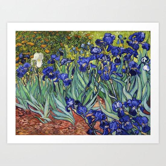 Irises by Vincent van Gogh by vintage_archive