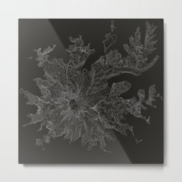 Mount Rainier, WA Contour Map Metal Print