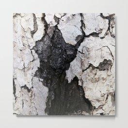 bark abstact no1 Metal Print