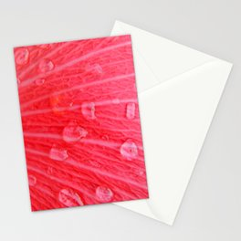 Pink Rain Stationery Cards