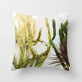 California Cactus Garden Throw Pillow