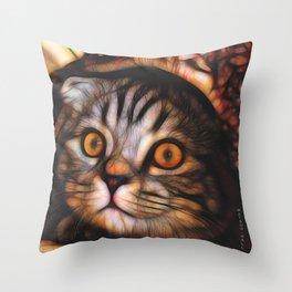 Scottish Fold Cat Portrait Throw Pillow