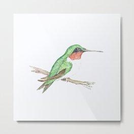 Hummingbird Jewel Metal Print
