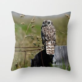 Hawaiian Short Eared Owl on Fence Post Throw Pillow