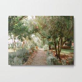 Botanical road through paradise | Morocco travel photography Metal Print