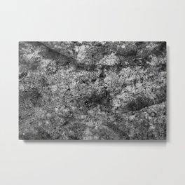 CC 003 Metal Print
