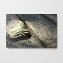 Melancholic Autumn. Lonely dry leaf in rustic, old wooden planks. Metal Print