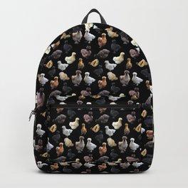 Silkie Bantams on Black Backpack