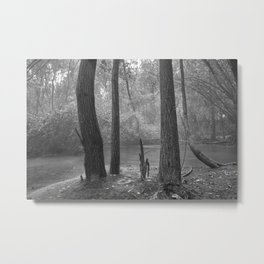 """""""Sit down and enjoy into the mist, don´t be afraid of dreaming...."""" Metal Print"""