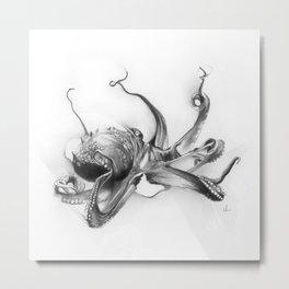 Pacific Octopus Metal Print