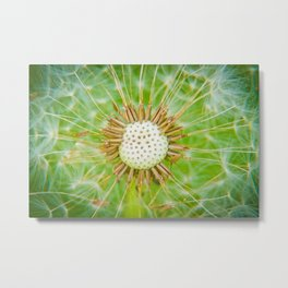 Closeup shot of a dandelion blowing seeds blowing away Metal Print