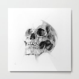Skull 52 Metal Print