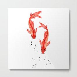 Curiosity. Fish and Tabpole Metal Print