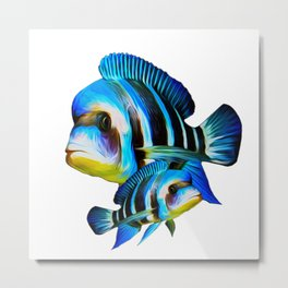 Frontosa Cichlid Pair Aquarium Fish Keeping  Metal Print
