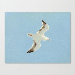 Sky Blue Sky - A Canvas Print