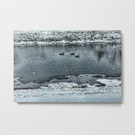 Geese in Rock River Metal Print