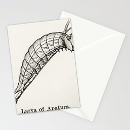 Larva of Apatura (Emperors) from Moths and butterflies of the United States (1900) by Sherman F. Den Stationery Cards