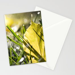 Yellow leaf in grass in autumn with morning dew bokeh Stationery Cards