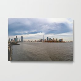 NYC_Gull Metal Print