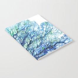 Fan Coral - Aqua Notebook