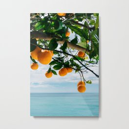 Amalfi Coast Oranges IV Metal Print