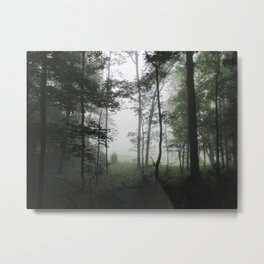 Misty Morning in the Woods of Cades Cove Metal Print