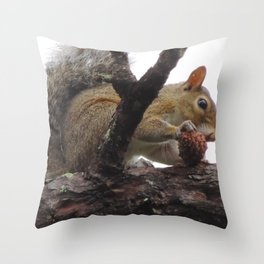 Mr squirrel snacking on a pinecone Throw Pillow