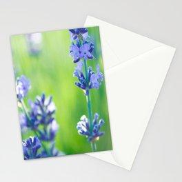 lavanda al atardecer en la Provenza Stationery Cards