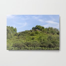 Etching Hill Metal Print