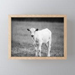 Black and White Calf Framed Mini Art Print