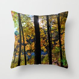 Walden Pond Autumn Forest  in Concord Massachusetts Throw Pillow