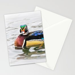 Wood Duck Two Stationery Cards