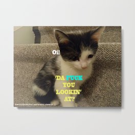 Sophia The Cat #3 [Tex's Owner] Metal Print