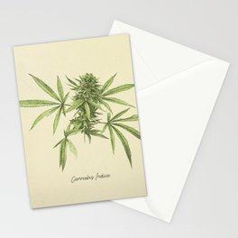 Vintage botanical print - Cannabis Stationery Cards