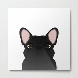 Frenchie - Black Brindle Metal Print