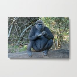 Eating Break Metal Print