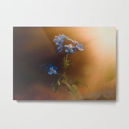 Woodland Forget-Me-Not Metal Print