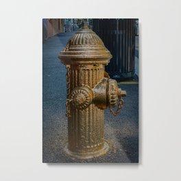 Liquid Gold Fire Hydrant Painted Fire Plug Metal Print