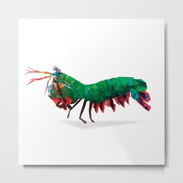 Geometric Abstract Peacock Mantis Shrimp  Metal Print