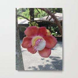 UNIQUE TROPICAL FLOWER Metal Print