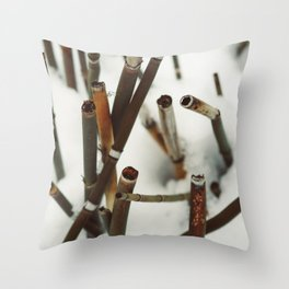 Snowy Reeds on the River Bank Throw Pillow
