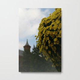 Sunlight in the Form of a Flower Metal Print