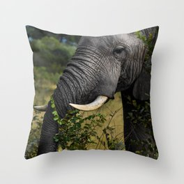 Elephant Early Morning Snack Throw Pillow