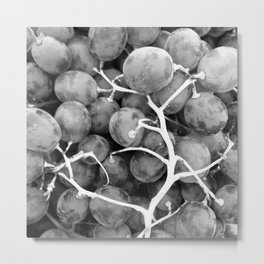 Grapes Fruit black and white Metal Print
