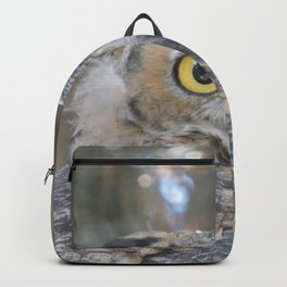 Young Owl at Noon Backpack
