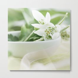 Spring made of dreams with snowdrops and Porzellan Metal Print