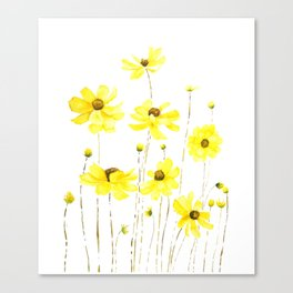 yellow cosmos flowers watercolor Canvas Print